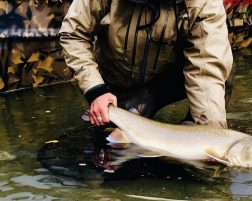 Fly Fishing – Spring Special
